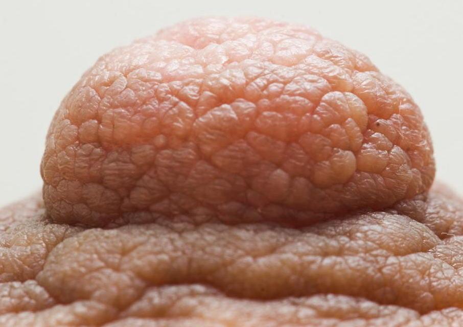 女性の乳頭アップでドン!シワまで拝める接写乳首のエロ画像 表紙